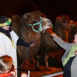Gamesley Christmas Market – Thursday 5pm till 8pm