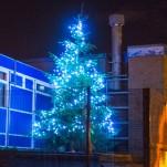 Christmas 2014 – Buses, bins and other info