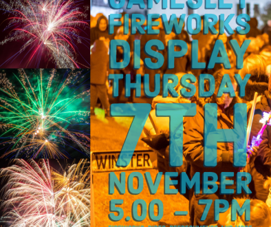 Gamesley Community Fireworks 2019